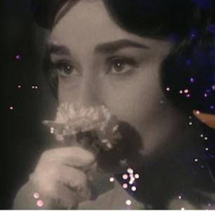 Susan Miller on How Marilyn Monroe, James Dean, and Audrey Hepburn Met Their Tragic Ends
