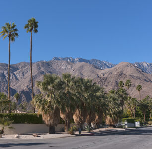 The Insider's Guide to Palm Springs
