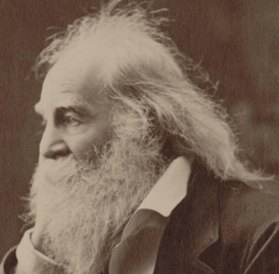 The Legacy of Walt Whitman, Queer Daddy of Free Verse